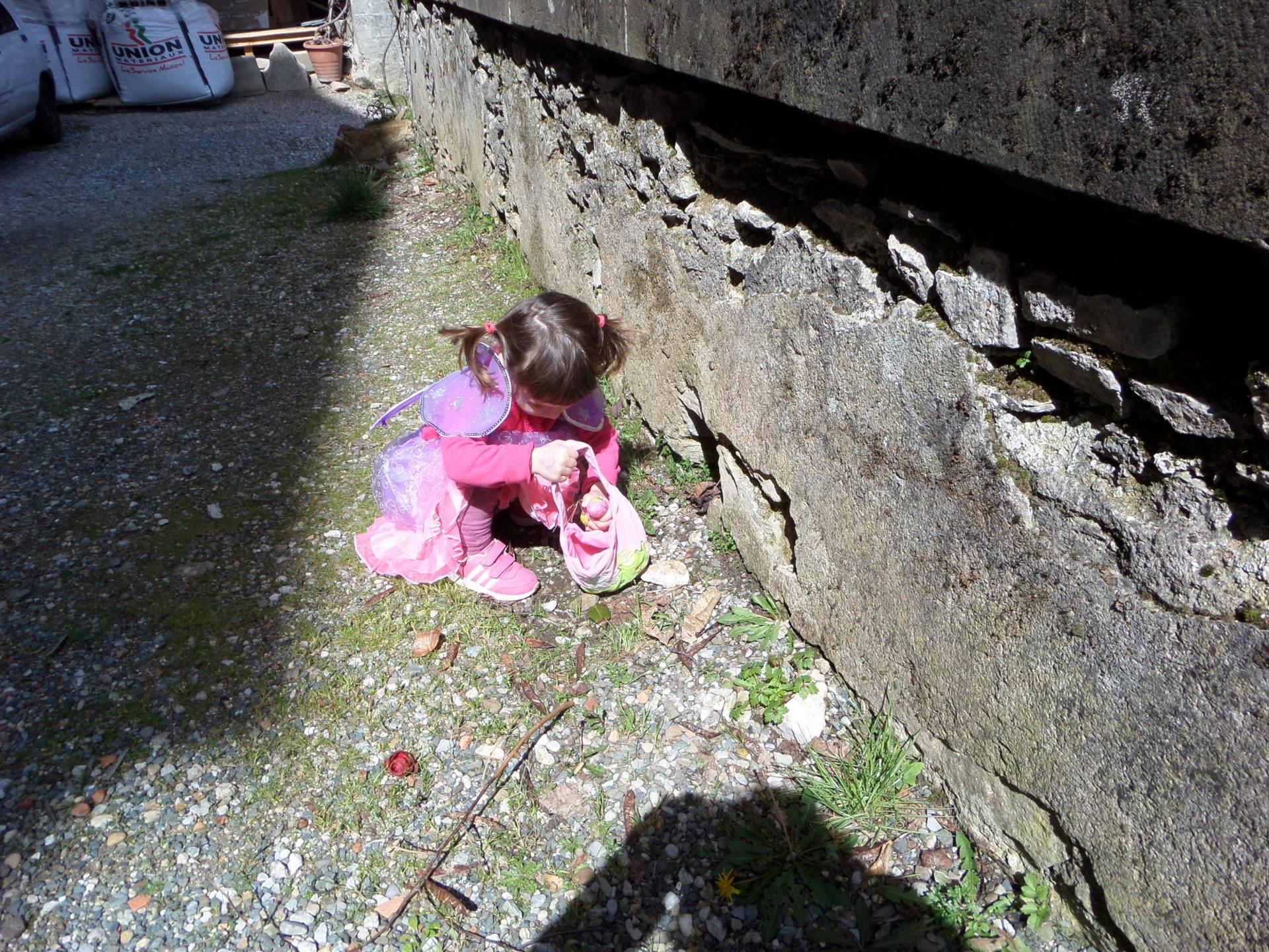 A la recherche des oeufs