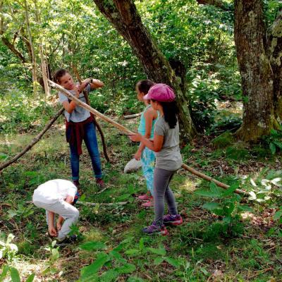 Atelier Enfant dans la Forêt
