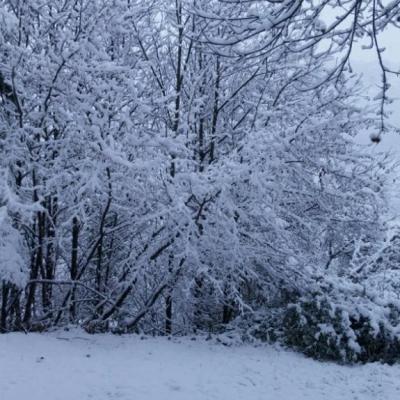 2016 -Il neige ...