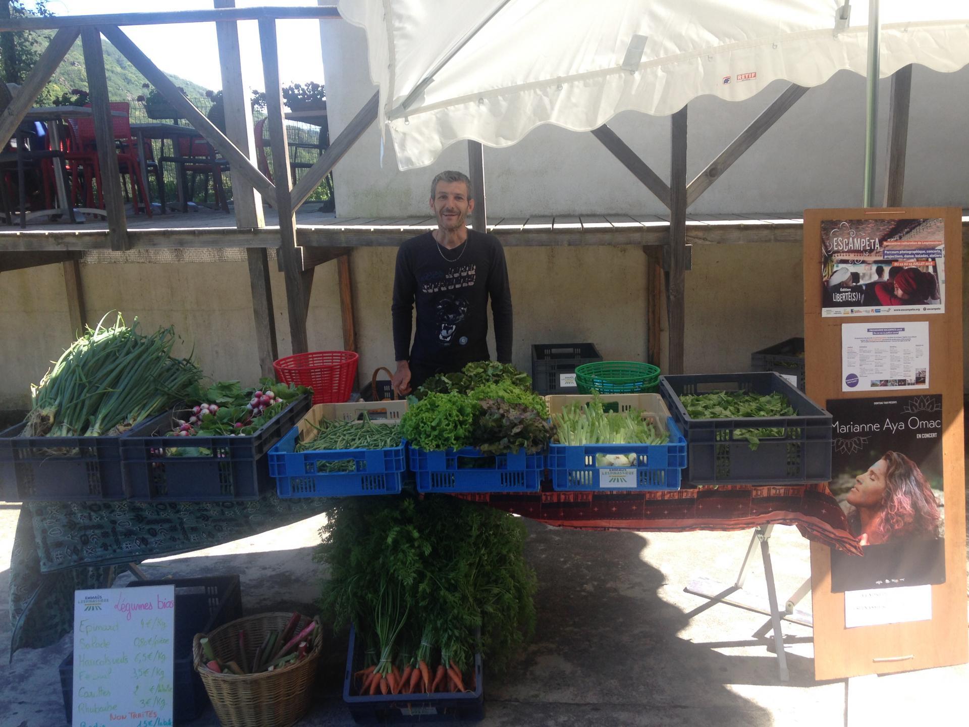 Les premiers légumes d'Emmaüs