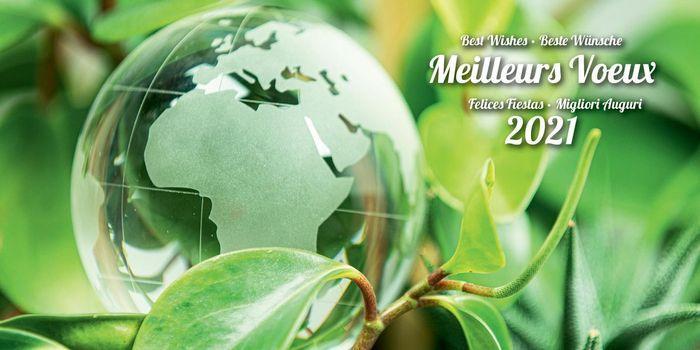 Carte de voeux publicitaire globe refcvp010112 calendriers saint jean 2021