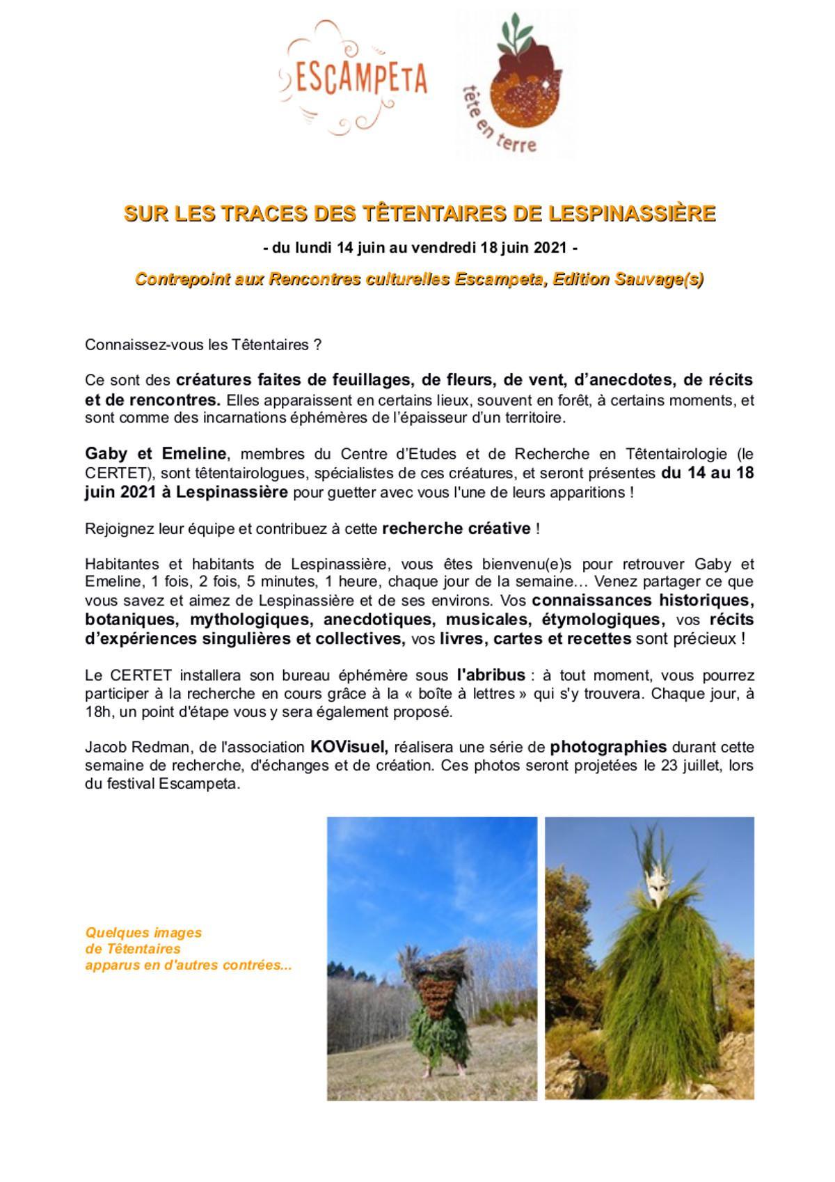 Presentation planning tetentaire a lespinassiere com village